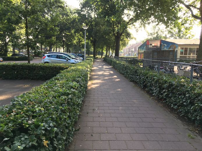 Rechts de Hertogin Johanna, links parkeerplekken. Door het warme weer valt de drukte dezer dagen mee.