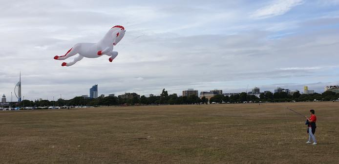 Het Twentse Ros sierde afgelopen week de skyline van Portsmouth. Dankzij Herman en Ina Plattje uit Westerhaar.