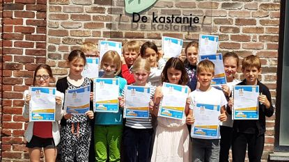 VBS De Kastanje slaagt voor voetgangersexamen