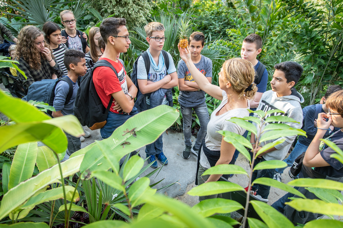 Brugklassers van het Goese Lyceum in het tropisch bos in Goes.