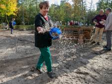 Vlindertuin en insectenhotel bij Eeckenrhode in Aalst: 'Hopelijk gaat het zaad het winnen van het onkruid'