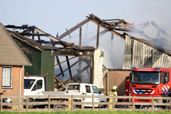 Bijna 1500 varkens zijn om het leven gekomen als gevolg van een zeer grote stalbrand in Streefkerk (Zuid-Holland) afgelopen augustus.
