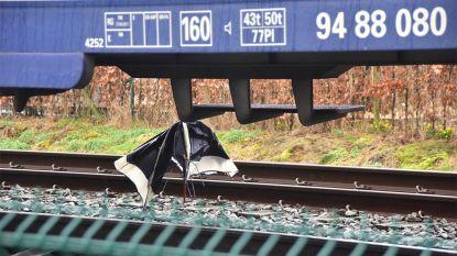 Voetganger (74) gegrepen door trein in Harelbeke