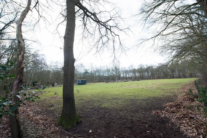 De beoogde plek voor de zendmast is een klein stukje weiland nabij de Westendorperheideweg in Emst.