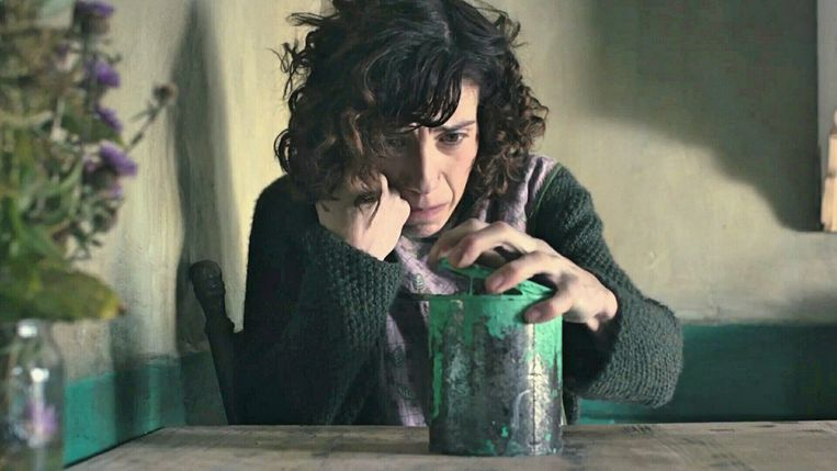 Sally Hawkins in 'Maudie' van Aisling Walsh Beeld
