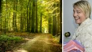 Licht op groen: openbare bossen voortaan overal toegankelijk