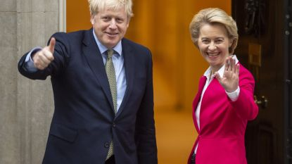 Brexit zal hard of (super)soft zijn