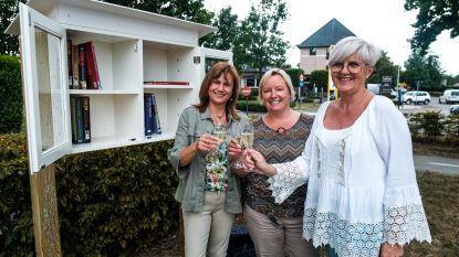 Boekenruilkastje ingehuldigd op Hubertusplein Wiemesmeer