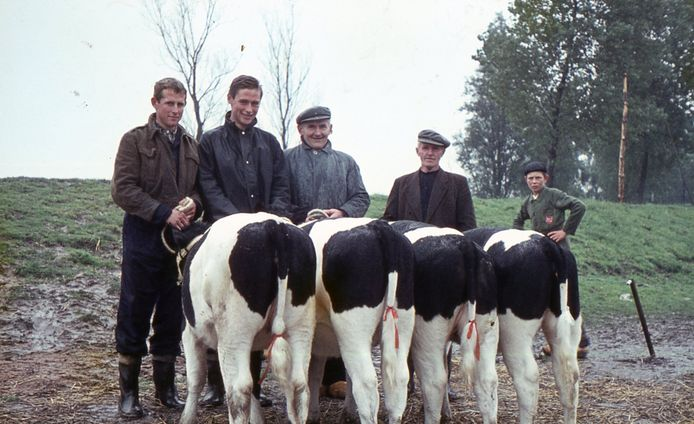 Tijmen (links) in jonge jaren met broer Zeger en vader Hendrik Vedder.