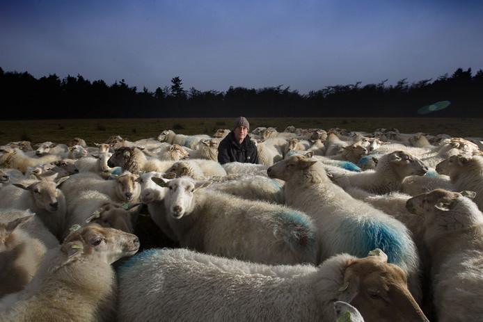 Kees Kromhout en zijn schapen behoren sinds kort tot het Nederlandse culturele erfgoed. Kees Martens/fotomeulenhof