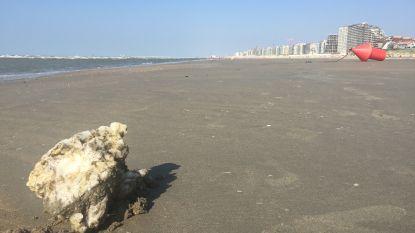 Grote brokken kaarsvet spoelen aan op Vlaamse stranden