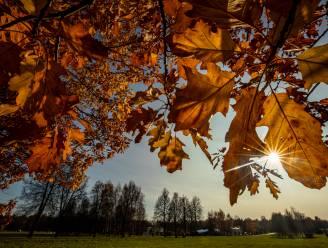 Frisse maar zonnige herfstdag