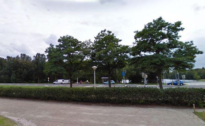 De bomen tussen de surfplas en de Drunenseweg in Waalwijk blijven voorlopig staan.