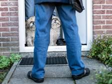 'Lingewaardse hond is een melkkoe voor de gemeentekas'