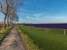 Nog meer panelen: Hernen wordt het zonnedorp van Maas en Waal