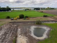 Van saaie weilanden naar zee van groen, geel en roze: landgoed Groot Dasselaar keert terug naar oude tijden