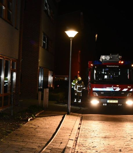 Coniferen in brand in Vroomshoop