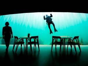 Voici le premier restaurant sous-marin d'Europe