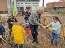 Voedselbosje op schoolplein van De Twijn: een betere biologieles kun je niet geven
