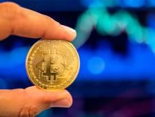 """Le bitcoin plonge brutalement: """"Les investisseurs doivent être préparés à perdre tout leur argent"""""""