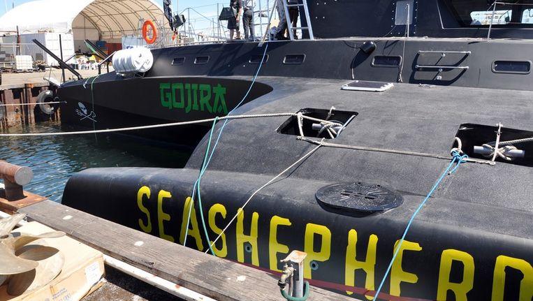 De Sea Shepherd Beeld