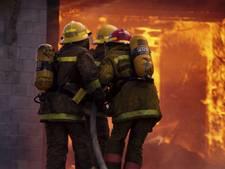 Brandweer werft nieuw talent tijdens Havendagen