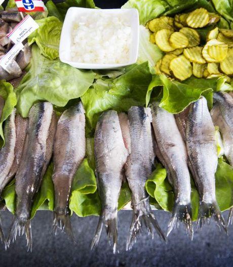 Nieuwe viswinkel in Borne