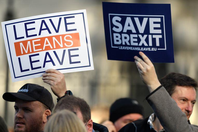 Brexiteers voelen zich in de steek gelaten door de gevestigde politiek.  Beeld Getty Images