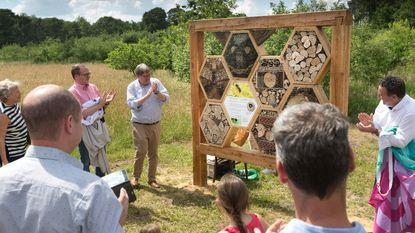 Bijenhotels in Resterheide moeten beestjes beter beschermen