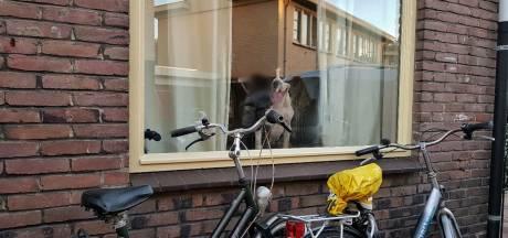 Vrouw probeert haar negen vechtende honden uit elkaar te halen en raakt gewond in Tilburg