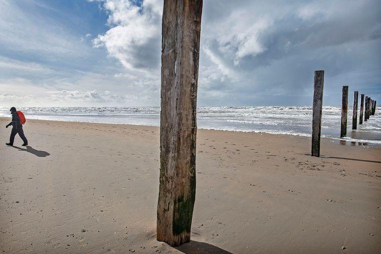 Een wandelaar loopt richting Noordwijk vanuit het strandreservaat Noordvoort, de palen markeren de plek. Beeld Guus Dubbelman / de Volkskrant