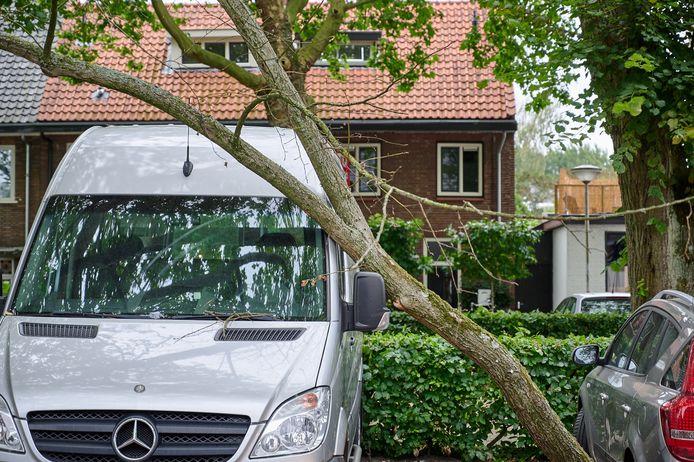 Auto en busje beschadigd door afgevallen tak in Breda.