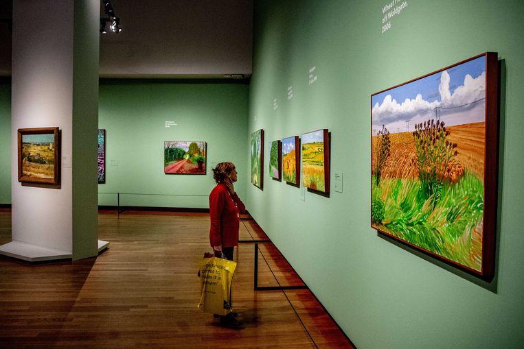 Tentoonstelling Hockney – Van Gogh: The Joy of Nature in het Van Gogh Museum. Beeld ANP