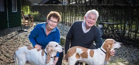 Markeloërs gooien hoge ogen op hondenshows: 'Echte dierenliefhebbers'