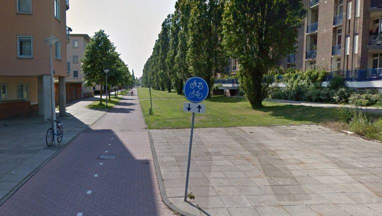 De Cruquiusweg waar een 200 meter lang vlinderlint is aangelegd. Beeld Google Street View