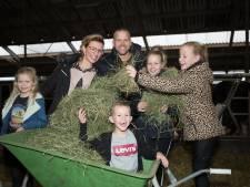 Nieuw menu met hooi en gerst beter voor koe, mens en natuur, belooft Lemeler boer Harold Dubbink