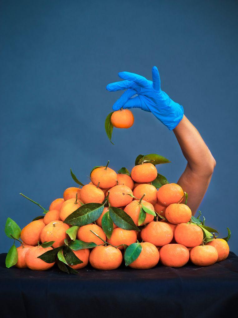 '50 mandarijnen, 50 dagen lockdown'   Beeld Hadas Itzkovitch en Anya van Lit