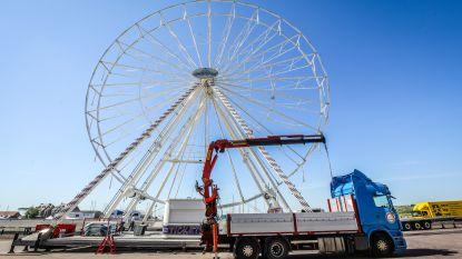 """Blankenberge pakt uit met reuzenrad van 40 meter hoog: """"Het uitzicht wordt fenomenaal"""""""