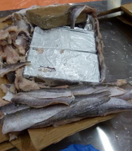 Jarenlang cel dreigt voor Utrechter na smokkel van ruim duizend kilo cocaïne
