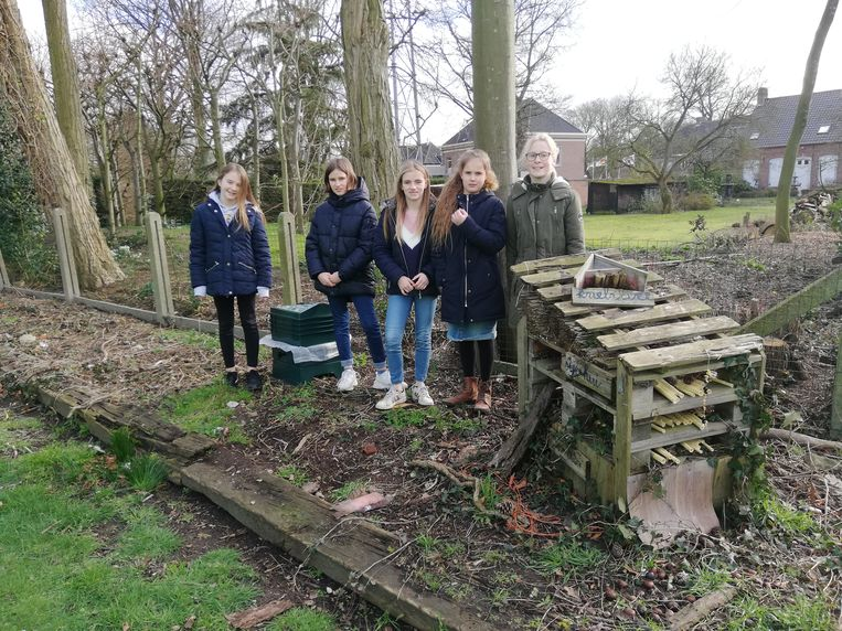 De leerlingen bouwden een insectenhotel in De Zonnebloem.