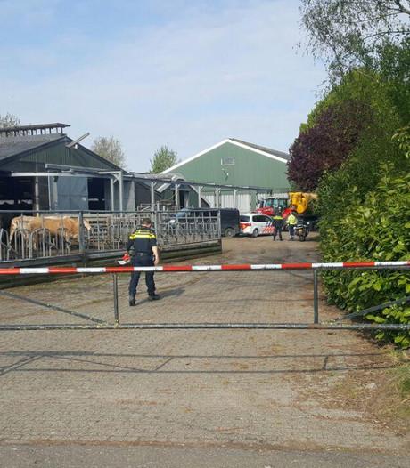 Boer overlijdt na confrontatie met stier op boerderij in Toldijk