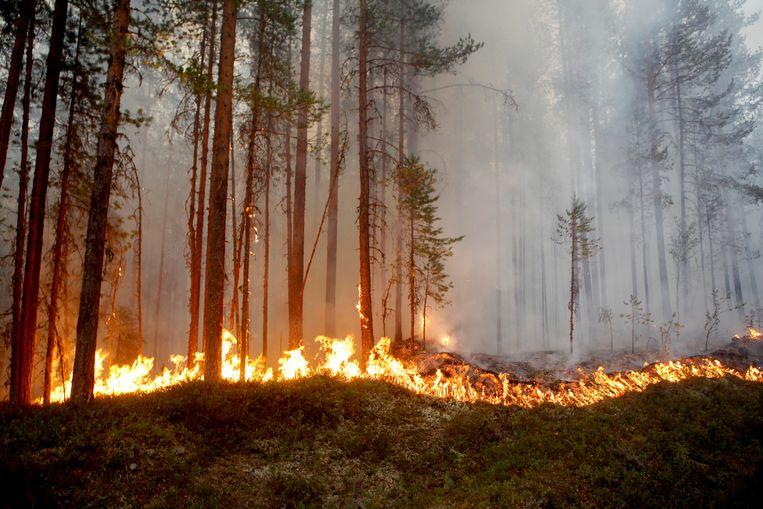 Karbole bij Ljusdal in Zweden.