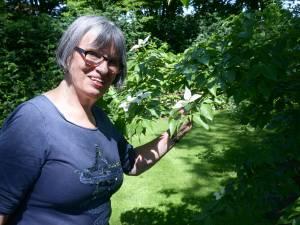 BN DeStem zoekt de mooiste tuinen van West-Brabant