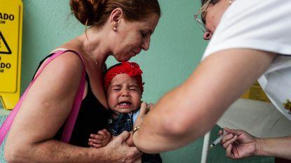 Brazilië kampt met uitbraak van gele koorts
