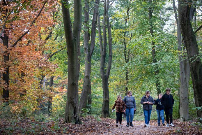Wandelaars in het Lunterse Buurtbos.