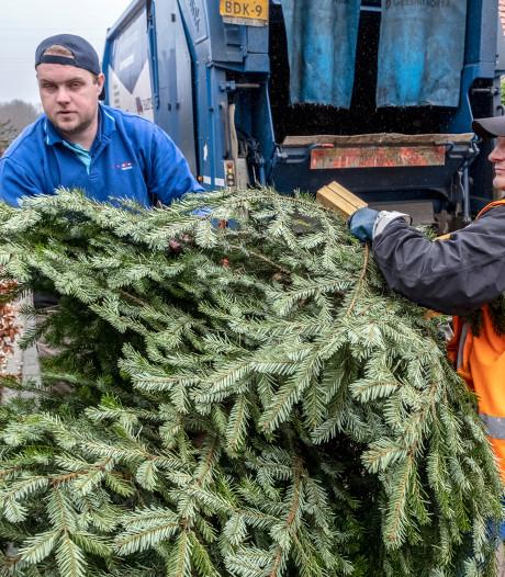 Vaarwel, kerstbomen in Langenboom, Vianen, Wanroij, Wilbertoord en Sint Anthonis