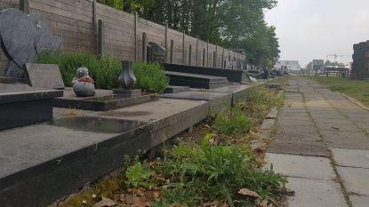 125.000 euro aan investeringen moet van gemeentelijk kerkhof parkbegraafplaats te maken