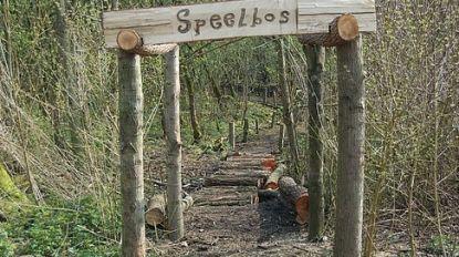 Glabbeek krijgt 20 hectare nieuw bos voor 2030