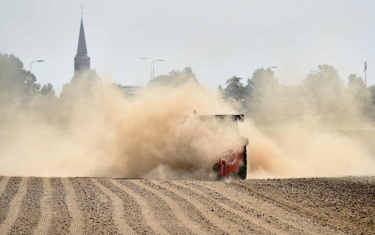 Boeren kunnen zich beter verzekeren tegen schade aan gewassen door slechte weersomstandigheden.  Beeld Foto Marcel van den Bergh / de Volkskrant