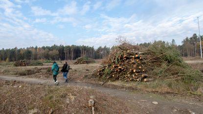Bom uit Wereldoorlog gevonden bij Terhills